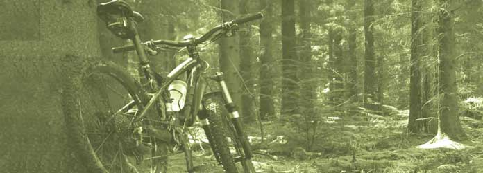 alquiler de bicicletas, Torrevieja