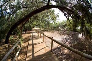 parque natural bike trail