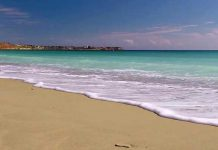 Beaches of La Zenia