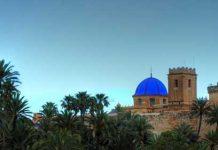 Visit Elche in Spain.