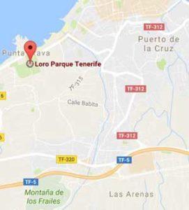 Loro Parque mapa