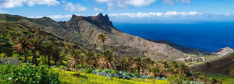 Canary Islands Landscape