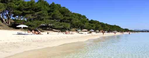 Playas de Alcúdia